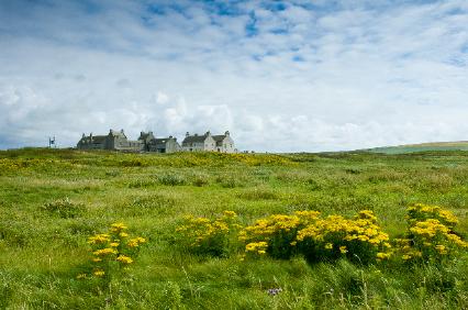 Orkney image